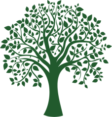 blank-tree